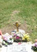 lauras grave with her two big sisters